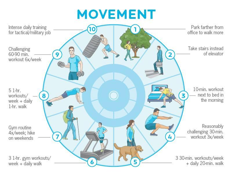 Movement Precision Nutrition